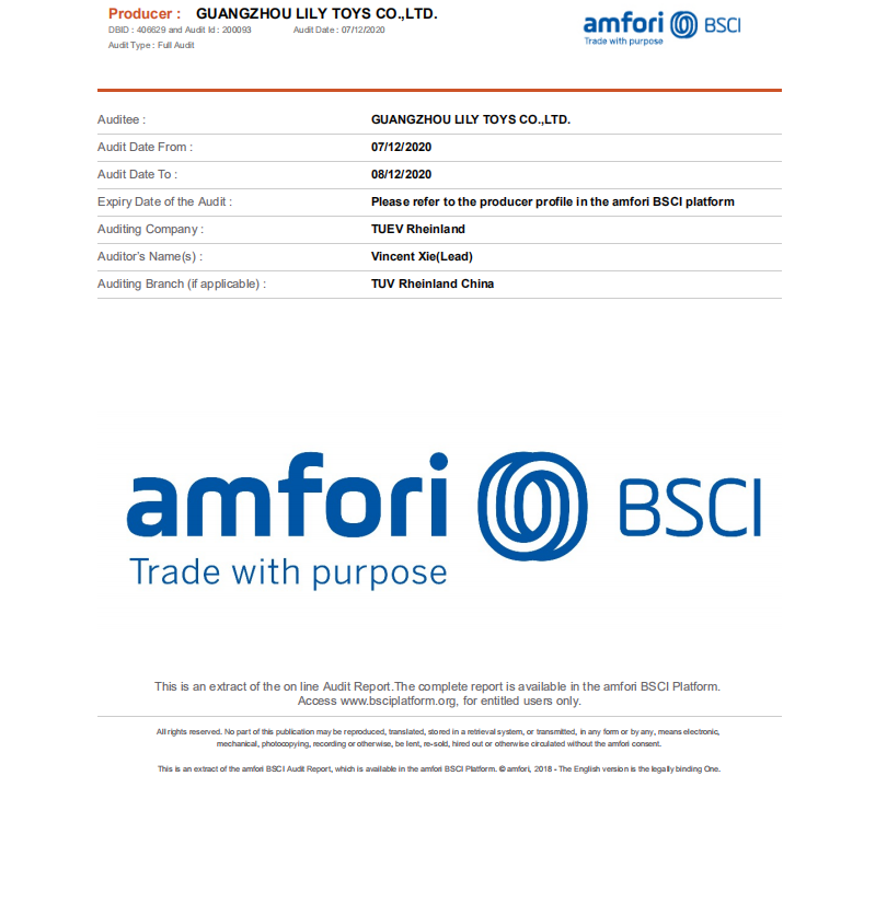 BSCI for the factory Audit