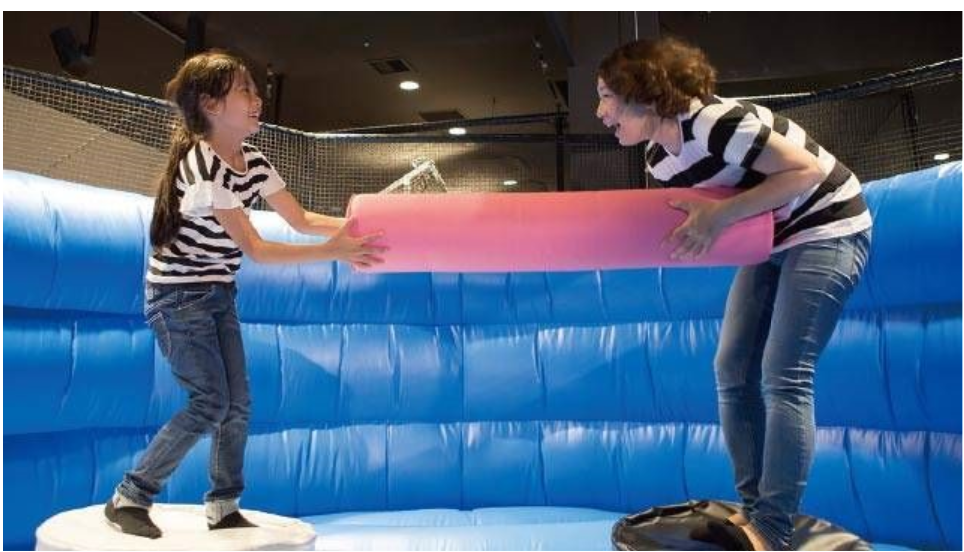gladiator joust interactive for kids